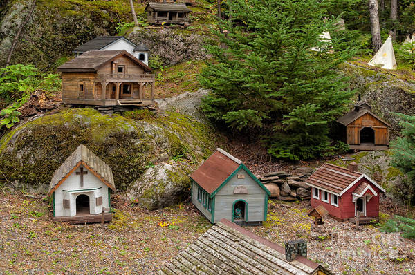 Photograph - Miniature Houses On The Forest Floor by Les Palenik