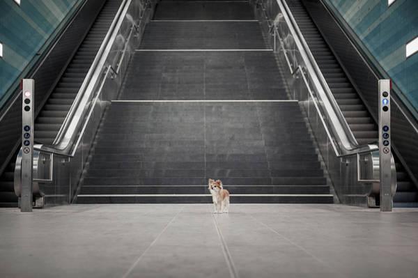 Urban Photograph - Minimalismus II. by Heike Willers