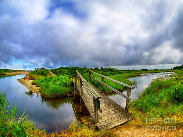 Photograph - Mink Meadow Bridge by Mark Miller