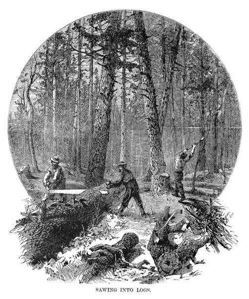 Painting - Minnesota Logging, 1870 by Granger