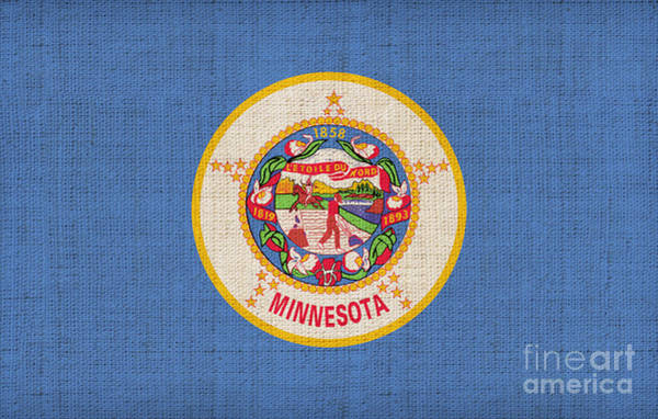 Minnesota Painting - Minnesota State Flag by Pixel Chimp