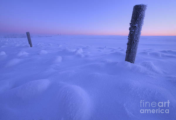 Photograph - Minus 28 Celsius In The Snow by Dan Jurak