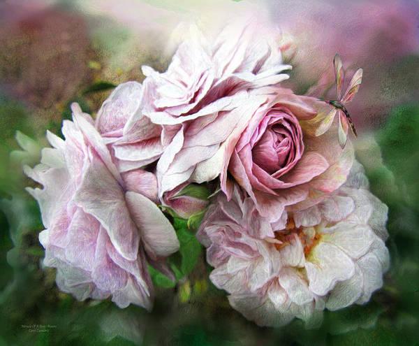 Mixed Media - Miracle Of A Rose - Mauve by Carol Cavalaris
