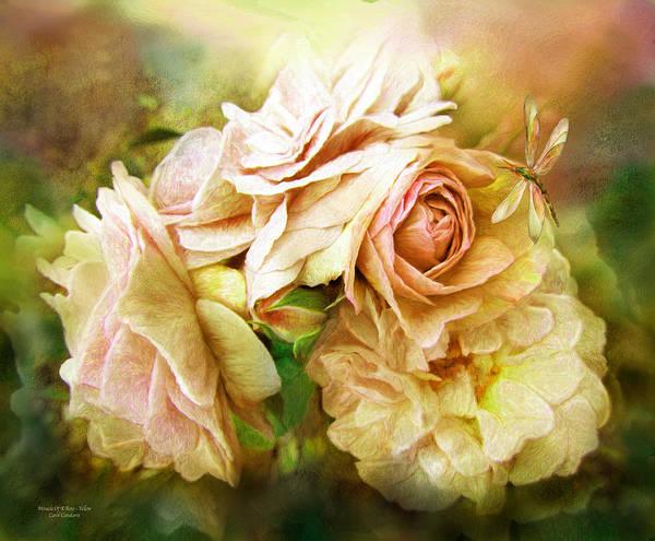 Mixed Media - Miracle Of A Rose - Yellow by Carol Cavalaris