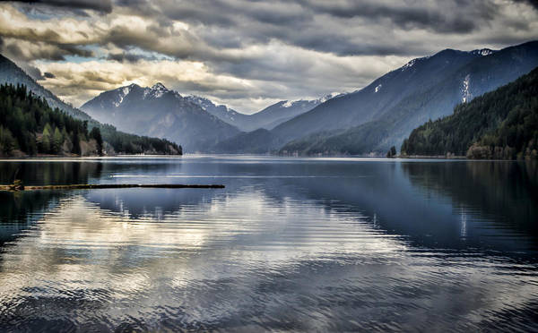 Olympic Peninsula Photograph - Mirror Image by Heather Applegate