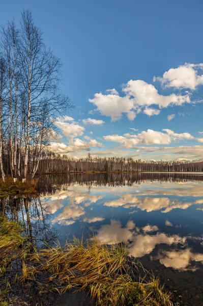 Photograph - Mirror Lake by Wes and Dotty Weber
