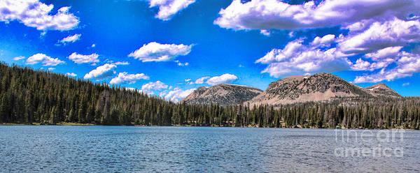 Photograph - Mirror Lake by Richard Lynch