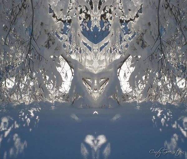 Mirror Of Snow  Art Print