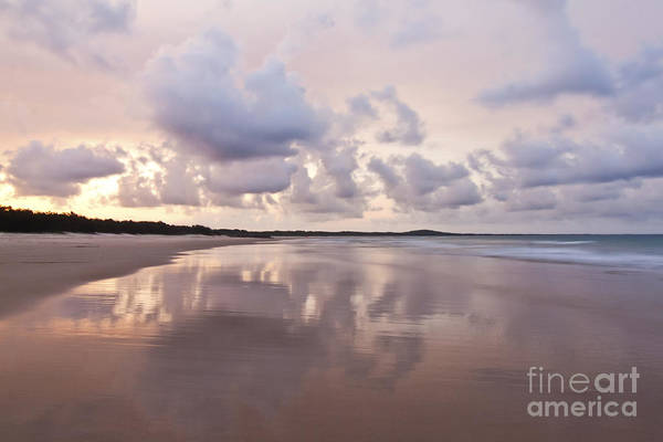 Noosa Wall Art - Photograph - Mirror On Main by Nicole Doyle