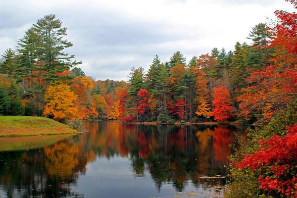 Photograph - Mirrored Lake by Jennifer Robin