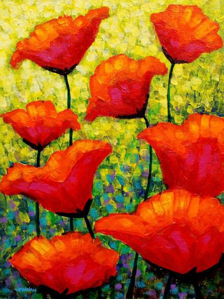 Christmas Flowers Painting - Mischa's Poppies by John  Nolan
