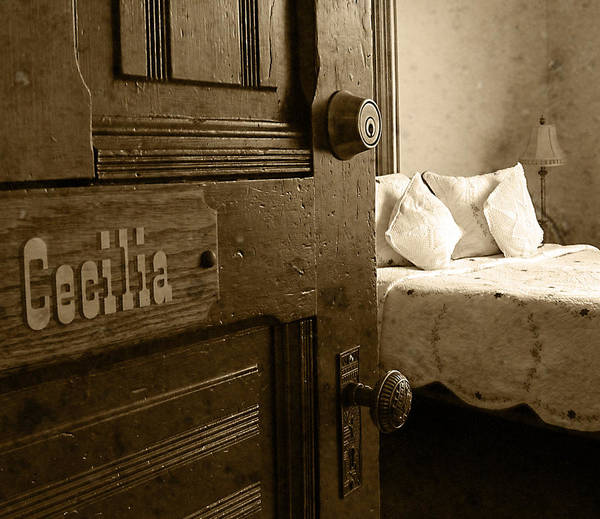 Photograph - Miss Cecilia's Room by Doug Matthews