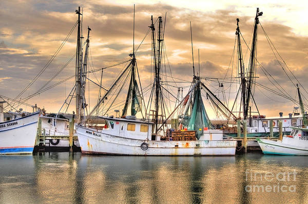 Miss Hale Shrimp Boat Art Print