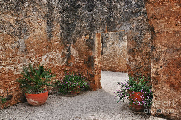 Mission San Jose At San Antonio Texas Art Print