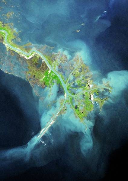River Delta Photograph - Mississippi Delta by Planetobserver/science Photo Library
