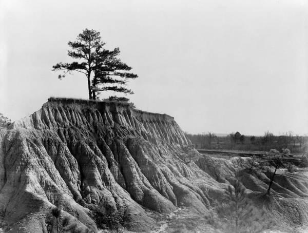 Photograph - Mississippi Erosion, 1936 by Granger
