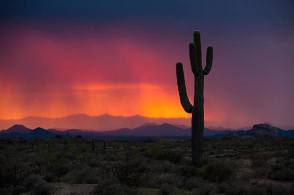 Photograph - Mist At Sunset by Paul Johnson