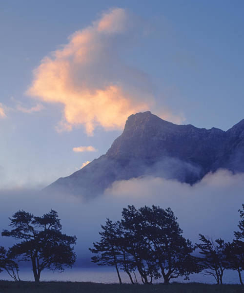 Photograph - 1m3004-v-mist At Waterton by Ed  Cooper Photography