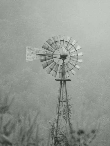 Photograph - Into The Mystic by Wild Thing