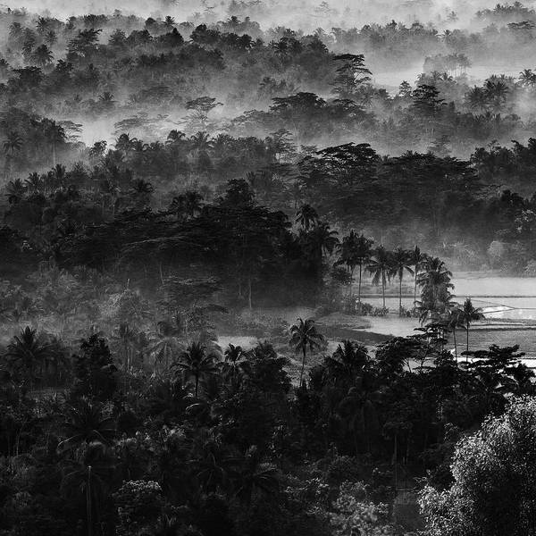 Wall Art - Photograph - .....mist In The Morning..... by Johanes Januar