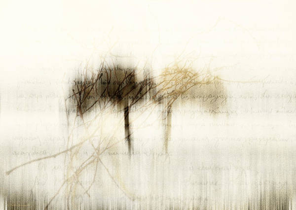 Gold Tree Photograph - Mist On My Wood by Antonis Gourountis