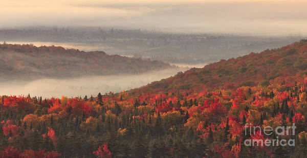 Photograph - Mist Over The Silvio Conte Wildlife Refuge by Charles Kozierok