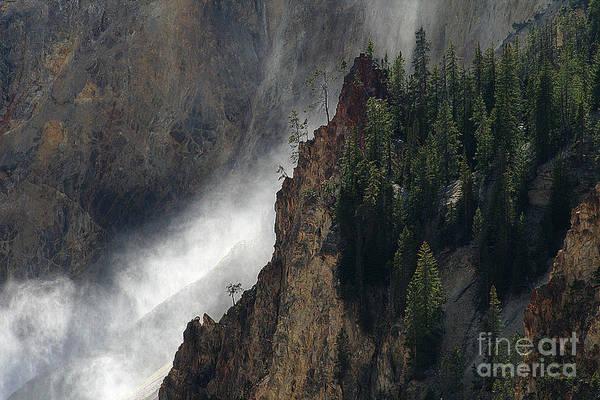 Photograph - Mist Rising 02 by E B Schmidt