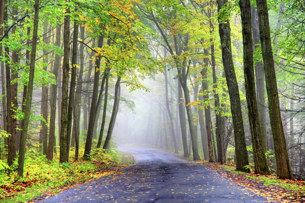 New England Autumn Photograph - Misty Autumn Road by Denistangneyjr