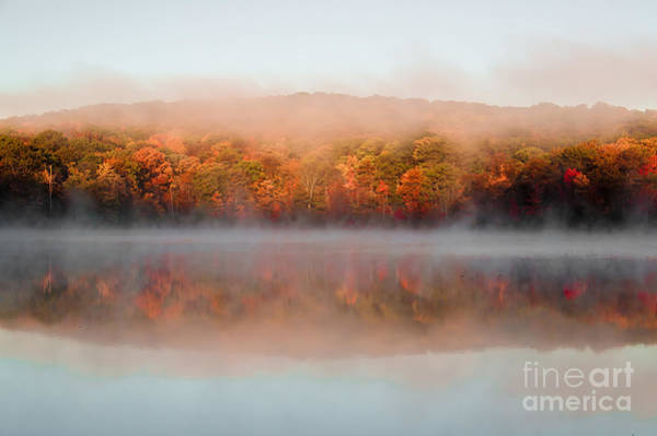 Photograph - Misty Foilage by Anthony Sacco