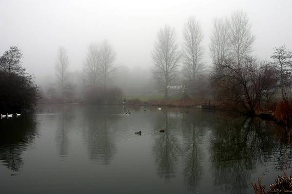 Photograph - Misty Lake Reflections by Jeremy Hayden