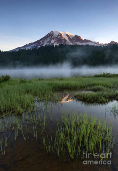 Mt Rainier Photograph - Misty Majesty by Mike Dawson
