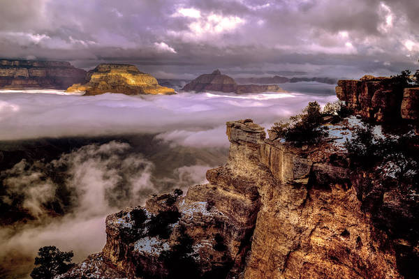 Photograph - Misty Morning - Grand Canyon by Cliff Wassmann