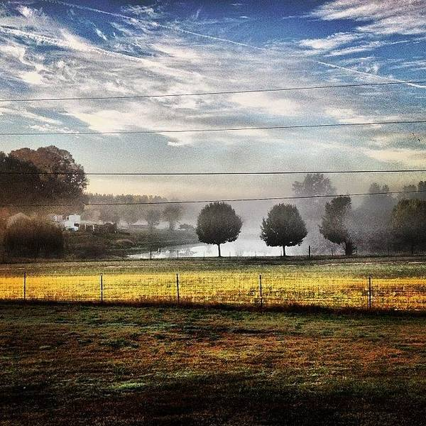Wall Art - Photograph - Misty Morning In Elberton Georgia by Robin Mead
