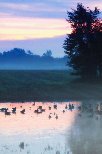 Photograph - Misty Morning by Lars Lentz