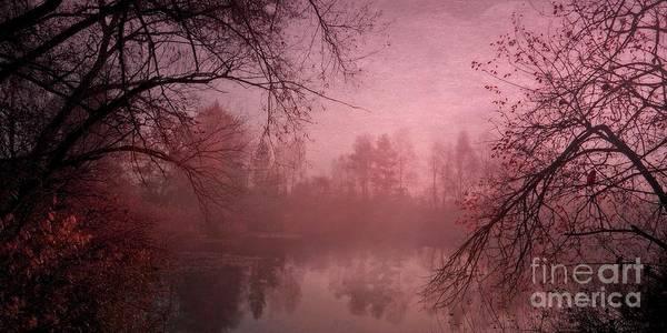 Wall Art - Photograph - Misty Morning Light by Priska Wettstein