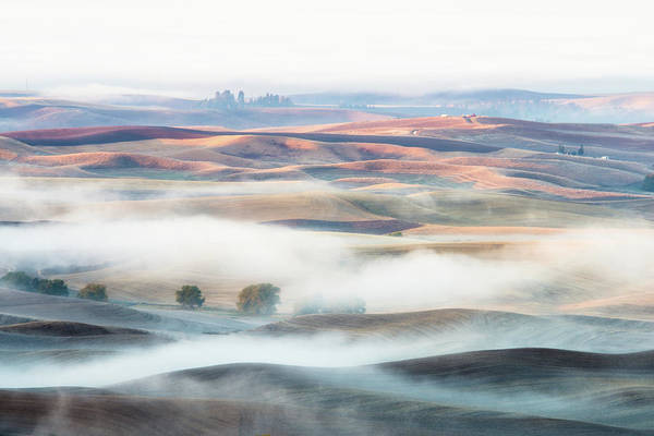 Layers Wall Art - Photograph - Misty Morning by Thien Nguyen