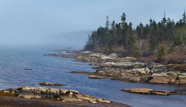 Wall Art - Photograph - Misty Morning Walk Along The Coastal Marsh by Trevor Nicodemo