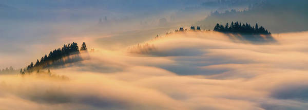 Wall Art - Photograph - Misty Morning by Wojciech Kruczynski