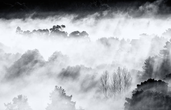 Foggy Photograph - Misty Mountains. by Antonio Carrillo Lopez