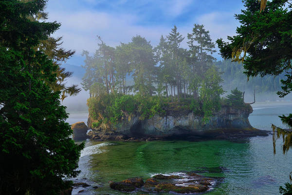 Photograph - Misty Seastack by Greg Norrell