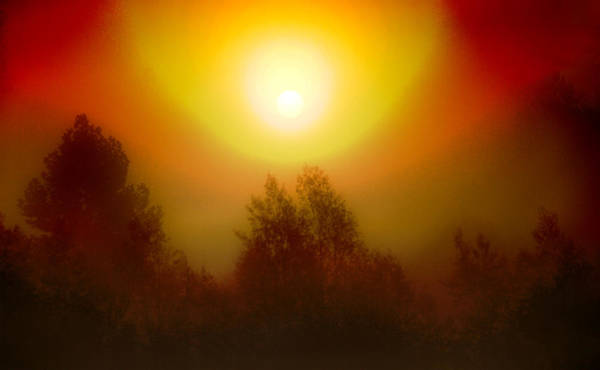 Photograph - Misty Sunrise by David Yocum