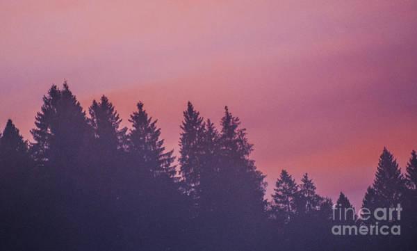 Wall Art - Photograph - Misty Sunrise by Yuri San
