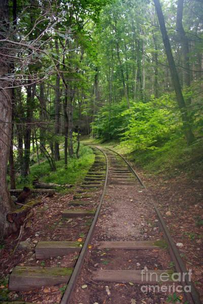 Photograph - Misty Train Tracks by Doc Braham
