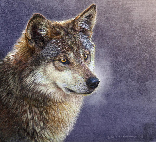 Timber Wolves Digital Art - Misty Twilight Timber Wolf by R christopher Vest