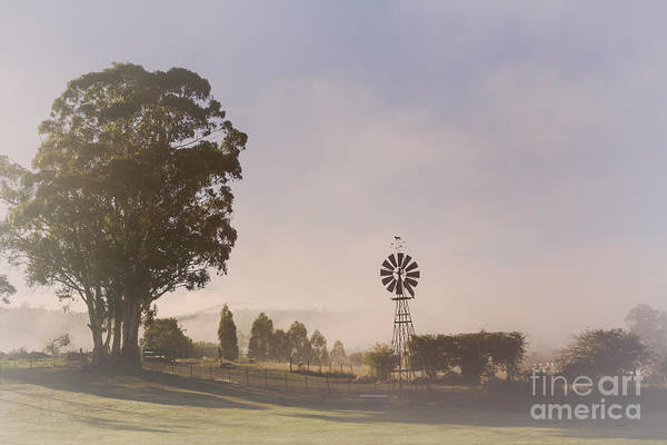 Photograph - Misty Westerway Morning by Elaine Teague