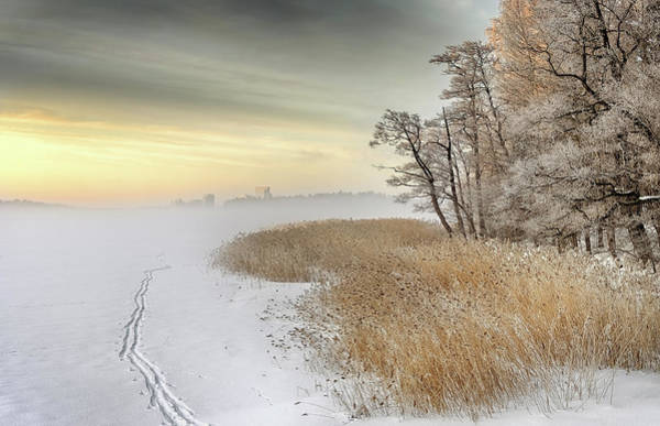 Finland Photograph - Misty Winter Morning by Keijo Savolainen