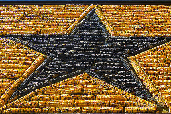 Photograph - Mitchell Corn Palace - Corn Star by Gregory Dyer
