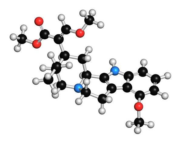 Chronic Pain Wall Art - Photograph - Mitragynine Herbal Alkaloid Molecule by Molekuul/science Photo Library