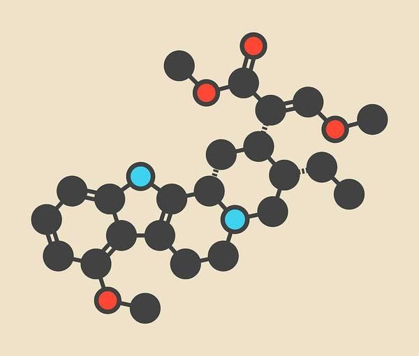 Mitragynine Molecule Art Print by Molekuul/science Photo Library