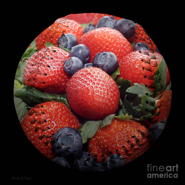 Photograph - Mixed Berries Baseball Square by Andee Design